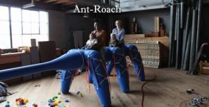 ant roach