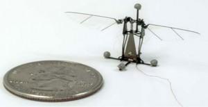 harvard-robobee